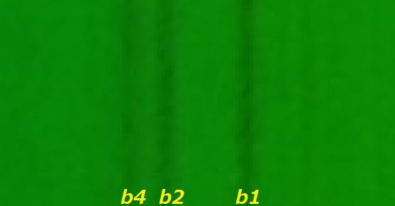 Imgp9243c_2